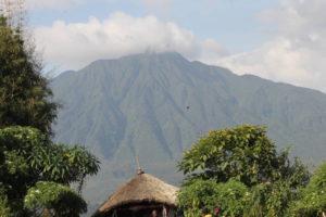 4 Days Gorillas & Volcanoes